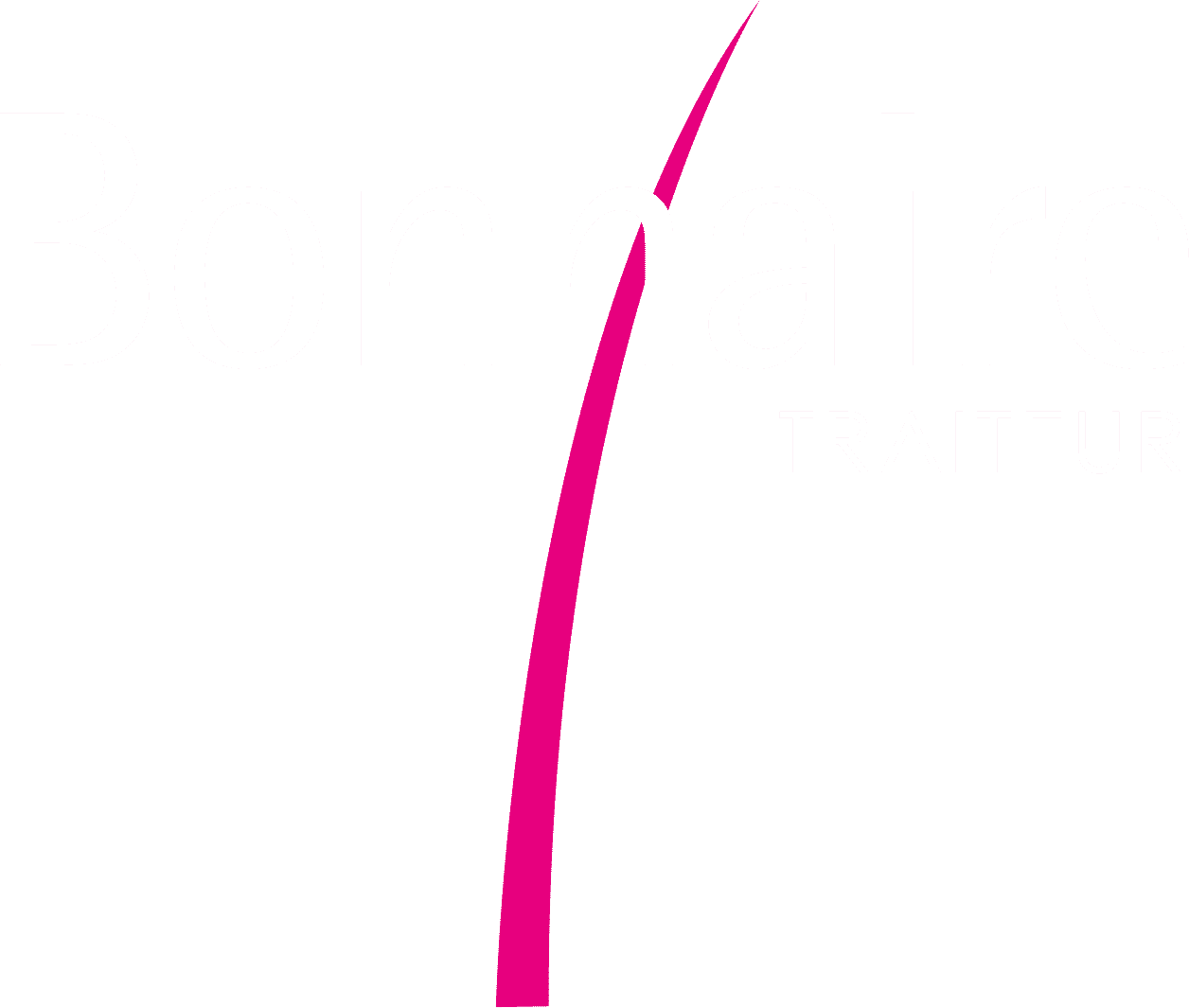 Logo officiel site bonnaire.fr version blanc