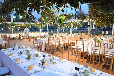 mariage-longues-tables-vegetation